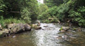 Komarovka river by Hiroyuki SASE